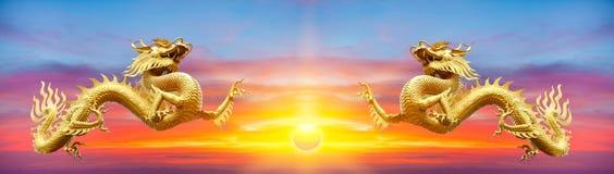 Guld- drake för par på solnedgångbakgrund Guld- kinesisk drake på Royaltyfri Bild