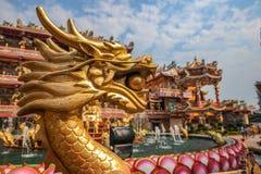Guld- drake i kinesisk relikskrin Arkivbilder