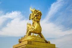 Guld- drake i ton, Vietnam royaltyfri foto