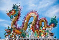 Guld- drake på himmelblått Arkivbild