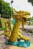 Guld- drakestatyer som är härliga och att förbluffa royaltyfria bilder