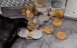 Guld- Eagle & silver Eagle Coins med silverstänger på översikt Royaltyfri Fotografi