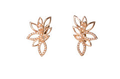 Guld- earings royaltyfri fotografi