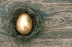 Guld- easter ägg i rede på träbakgrund Arkivbilder