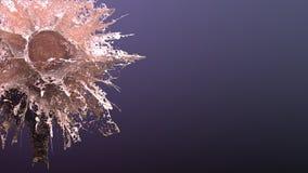 Guld- explosionfärgstänk Royaltyfri Bild