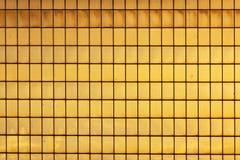 Guld- exponeringsglas royaltyfri fotografi