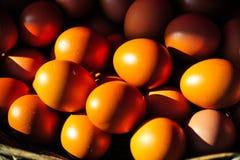 Guld- färger av ägg i korgen Arkivbilder