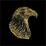 guld- fågel Royaltyfri Bild