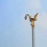 Guld- fågel Royaltyfri Fotografi
