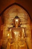 Guld förgyllde statyer i den Ananda templet, Bagan, Myanmar Arkivfoto