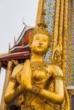 guld- förmyndare för ängelkvinnlig Royaltyfri Fotografi