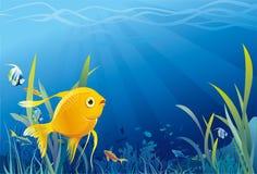 Guld- fisk, undervattens- liv - illustration stock illustrationer