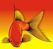 Guld- fiskbakgrund Royaltyfri Bild