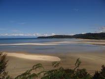 Guld- fjärd, södra ö av sandig lapp för Nya Zeeland, hav strand royaltyfria foton