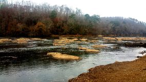 Guld- flod Arkivbild