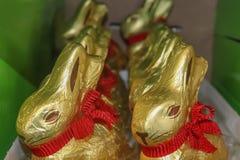 Guld- folie täckte chokladkaniner med röda pilbågar runt om deras halsar som i rad sitter i en grön ask för påsk royaltyfri bild