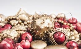 Guld- frukter och röda äpplen Arkivbilder