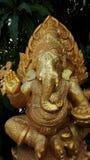 Guld- Ganesh Leaves är bakgrunden Royaltyfria Foton