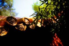 Guld- glasad tegelplatta Arkivfoton