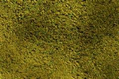 Guld-gräsplan folie, stramt texturerad brunt, gräsplan och guld flecked bakgrund arkivbild