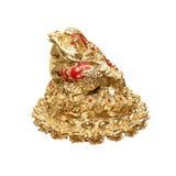 Guld- groda från Kina Royaltyfri Fotografi