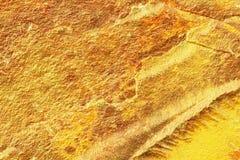 Guld- grungetextur av guld- klumpyttersida Guld- bakgrund av naturlig yttersida Arkivbild