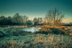 Guld- gryningljus bryter på ett djupfryst damm på den Wetley heden, Staffordshire arkivbilder