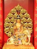 Guld- Guan-Yin på elefantstatyn Arkivfoto