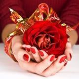 guld- händer som rymmer det manicured röda bandet, steg royaltyfria foton