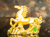 guld- häst Royaltyfria Foton