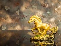 guld- häst Royaltyfri Foto