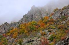 Guld- höst för berglandskap Royaltyfri Foto