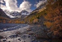 Guld- höst i bergen Lat för Siberian lärk Larixsibirica Östligt Sayan område indisk sommar arkivfoto