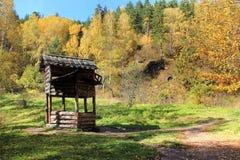 Guld- höst i den Altai regionen i Ryssland Härligt landskap - väg i höstskog royaltyfri bild
