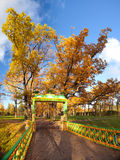Guld- höst i St Petersburg Royaltyfri Foto