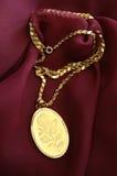 guld- halsband Arkivfoton