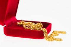 Guld- halsband Royaltyfria Bilder