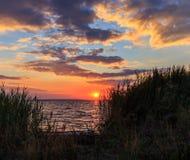 guld- havssolnedgång Arkivfoto