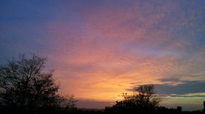 Guld- himmel i gryningen Arkivfoto