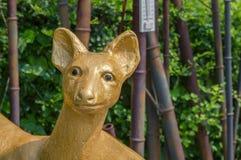 Guld- hjortstaty i DMZEN - sydkoreansk sida royaltyfri fotografi