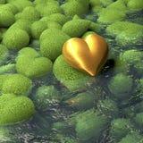 Guld- hjärta som ligger på mossig hjärta formade stenar bredvid ett damm, vattenyttersida Royaltyfria Bilder