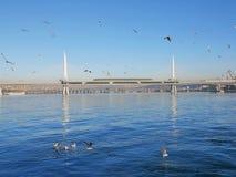 Guld- horn- tunnelbanabro, som är enbliven bro på den Istanbul tunnelbanalinjen, över det guld- hornet eller Halicen, ett viktigt Royaltyfri Fotografi