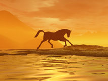 guld- häst Royaltyfri Bild