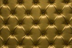 guld- hud Royaltyfria Foton
