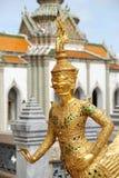 guld- jätte Royaltyfria Bilder