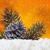 Guld- julbakgrunds- och grankottar Royaltyfria Foton