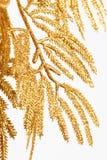guld- julgarnering royaltyfria bilder