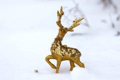Guld- julhjortar på snö Arkivbilder