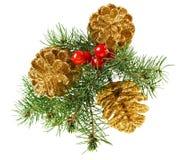 Guld- julkottar med granfilialen Arkivbild