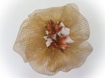 Guld- julkrans Royaltyfria Bilder